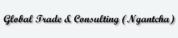 Global Trade & Consulting LLC